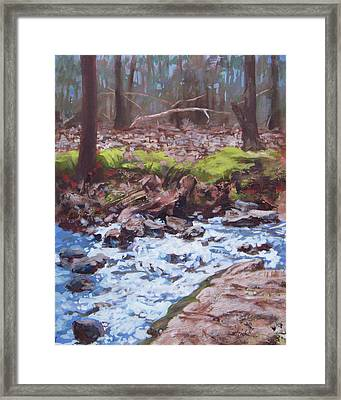 Laughing Stream In Winter Framed Print by Carol Strickland