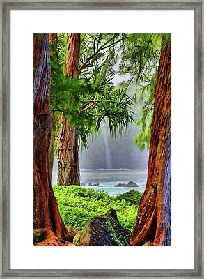 Framed Print featuring the photograph Laupahoehoe Hawaii by DJ Florek