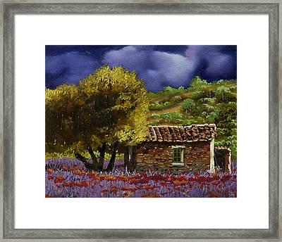 Lavanda Sotto Il Cielo Blu Framed Print