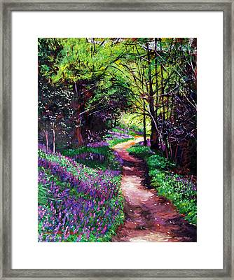 Lavendar Lane Framed Print