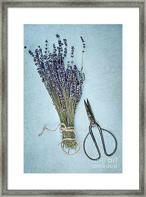 Framed Print featuring the photograph Lavender And Antique Scissors by Stephanie Frey