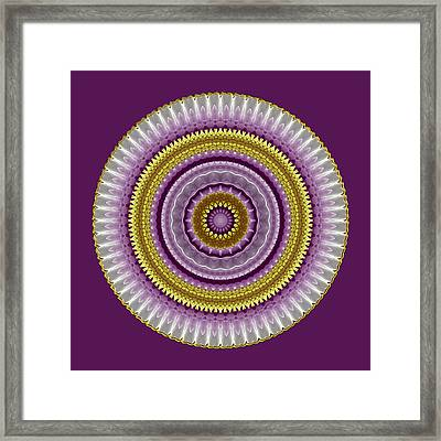 Lavender And Gold Lace Framed Print