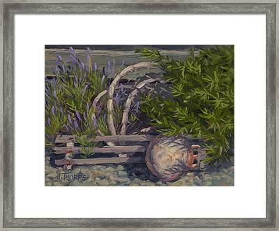 Lavender And Lobster Framed Print by Jane Thorpe