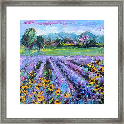 Lavender And Sunflowers In Bloom Framed Print by Jennifer Beaudet