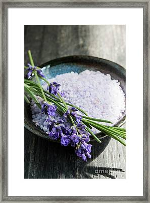 Lavender Bath Salts In Dish Framed Print by Elena Elisseeva