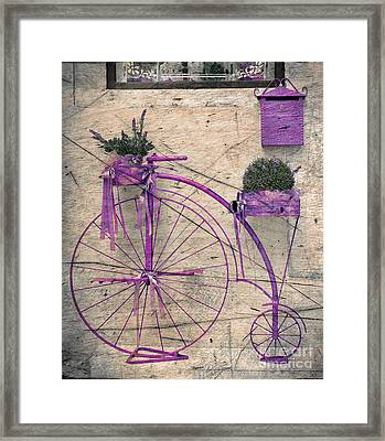 Lavender Bicycle Framed Print
