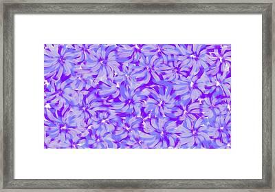 Lavender Blue 1 Framed Print