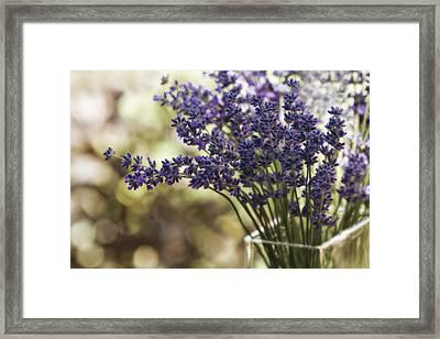 Lavender Bokeh Framed Print by Rebecca Cozart