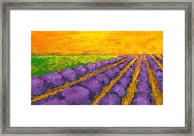 Lavender Field A Modern Impressionistic Artwork In Palette Knife Framed Print
