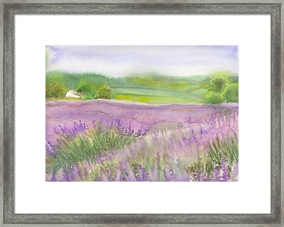 Lavender Field In Italy Framed Print by Yolanda Koh