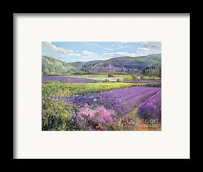 Hill Framed Prints