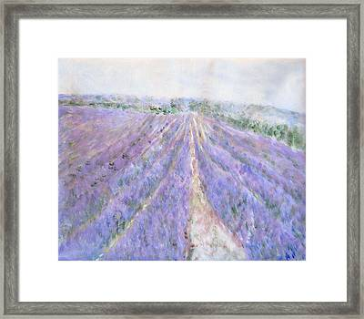 Lavender Fields Provence-france Framed Print