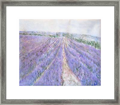 Lavender Fields Provence-france Framed Print by Glenda Crigger