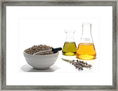 Lavender Flower Aromatherapy Scent Manufacturing Process Framed Print