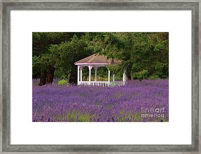 Lavender Gazebo Framed Print