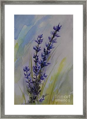 Lavender Framed Print by Gretchen Bjornson