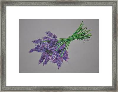 Framed Print featuring the pastel Lavender by Linda Ferreira