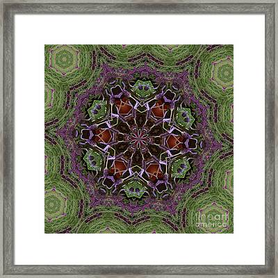 Lavender Mandala 2 Framed Print