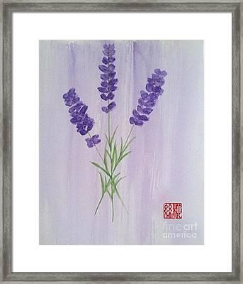 Lavender Framed Print