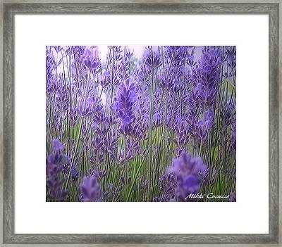 Lavender Framed Print by Mikki Cucuzzo
