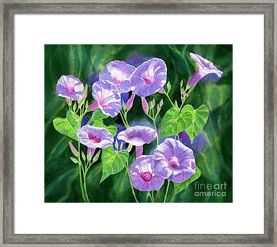 Lavender Morning Glories With Background Framed Print