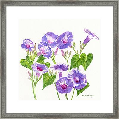 Lavender Morning Glory Flowers Square Design Framed Print by Sharon Freeman
