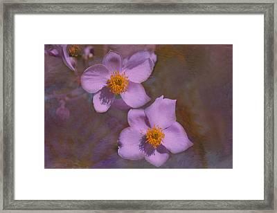 Lavender Petals Framed Print by Lena Photo Art