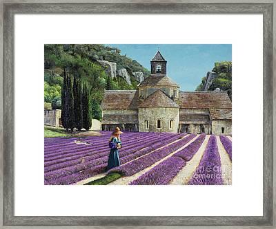 Lavender Picker - Abbaye Senanque - Provence Framed Print by Trevor Neal