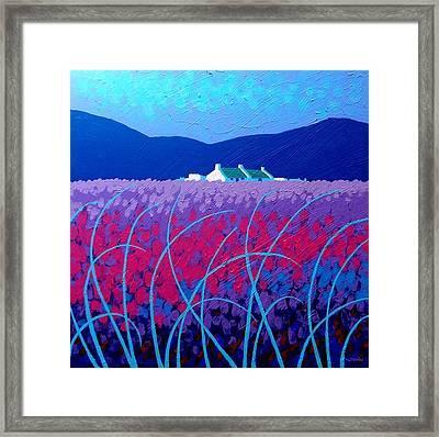 Lavender Scape Framed Print by John  Nolan