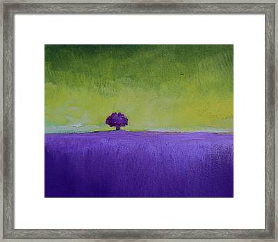 Lavender Valley Framed Print