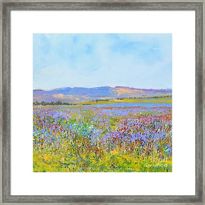 lavenderfields in the Provence Framed Print