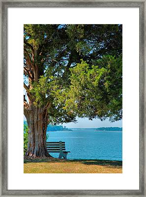 Lawn With A View Framed Print by Steven Ainsworth