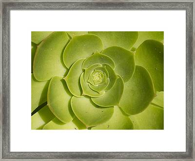 Framed Print featuring the photograph Layers by Nathan Rupert