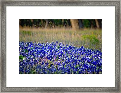 Framed Print featuring the photograph Layers Of Blue by Linda Unger
