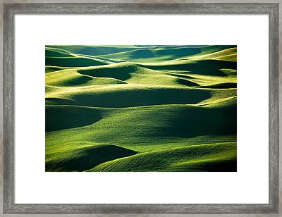 Layers Of Green Framed Print by Todd Klassy