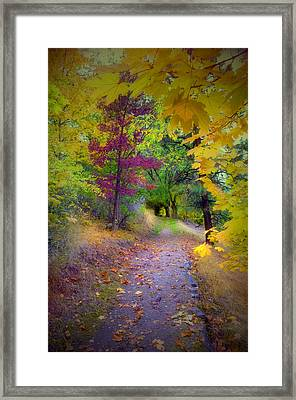 Layers Of Leaves Framed Print