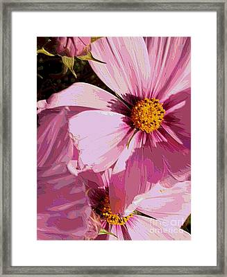 Layers Of Pink Cosmos - Digital Art Framed Print by Carol Groenen