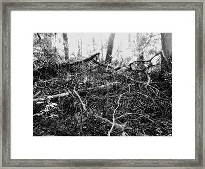 Layers Of Time Passed Framed Print by Scarlett Royal
