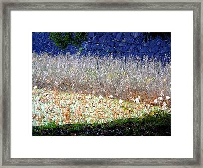Layers Framed Print by Roberto Alamino