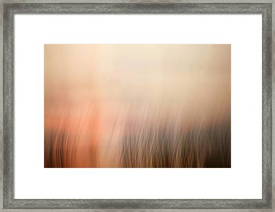 Laying Low At Sunrise Framed Print by Marilyn Hunt