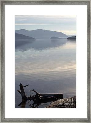 Framed Print featuring the photograph Laying Still by Victor K