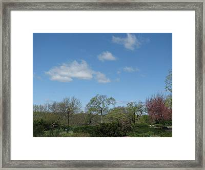 Lazy Afternoon Framed Print by Hasani Blue