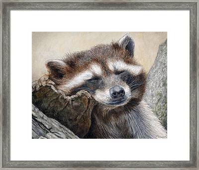 Lazy Afternoon Framed Print by Pat Erickson