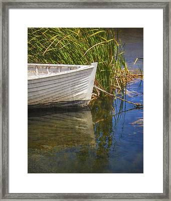 Framed Print featuring the photograph Lazy Days by Amy Weiss
