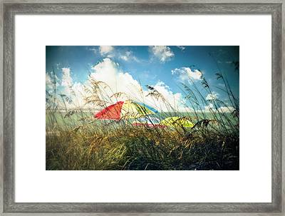Lazy Days Of Summer Framed Print