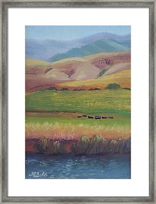 Lazy Grazing  Framed Print by Margaret Bobb