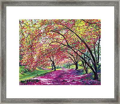 Lazy On A Sunday Central Park Framed Print by David Lloyd Glover