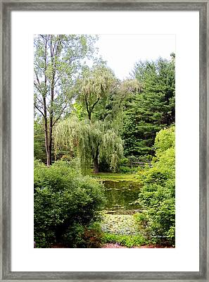 Lazy Pond Framed Print