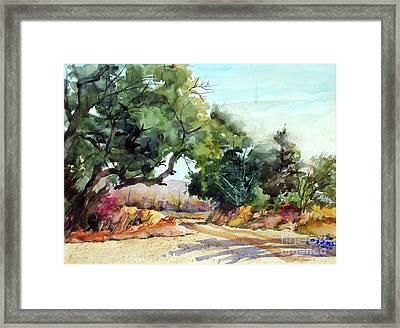 Lbj Grasslands Tx Framed Print