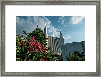 Lds From The Flowers Framed Print
